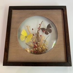 Vintage Wall Art - Vintage Dunston Butterfly Wall Art